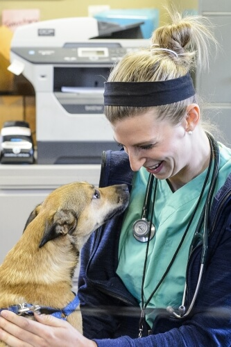 Veterinary student Lindsey Meyer greets Ike.