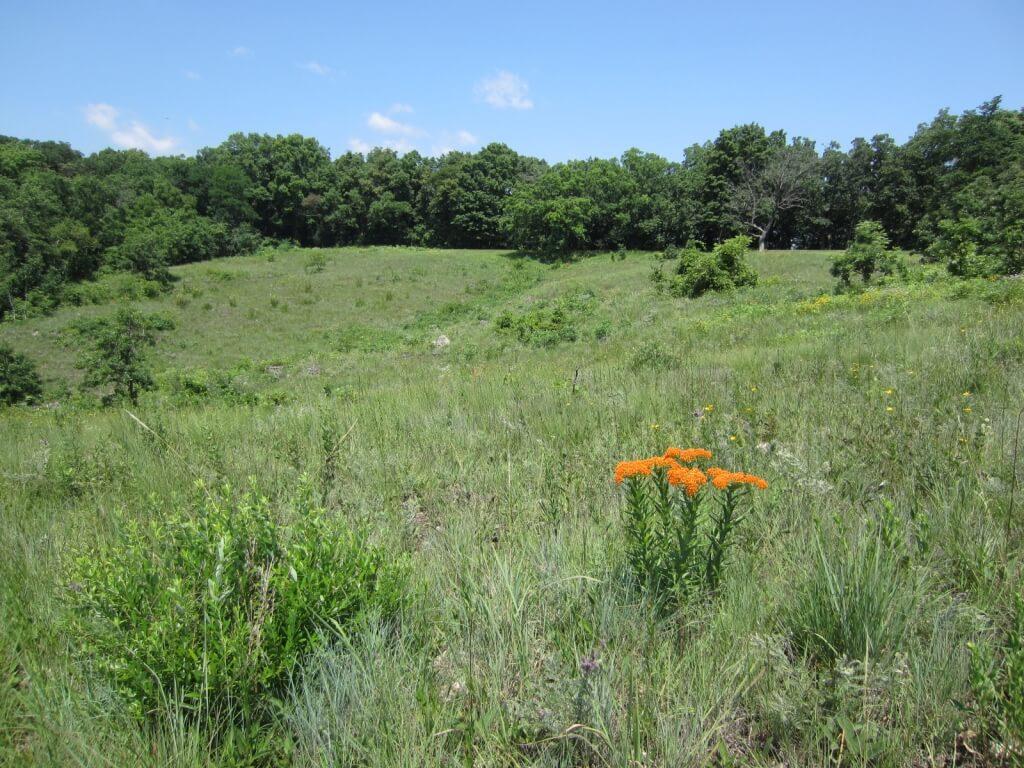 Dewey Heights Prairie State Natural Area in Nelson Dewey State Park, located in Cassville, Wisconsin.