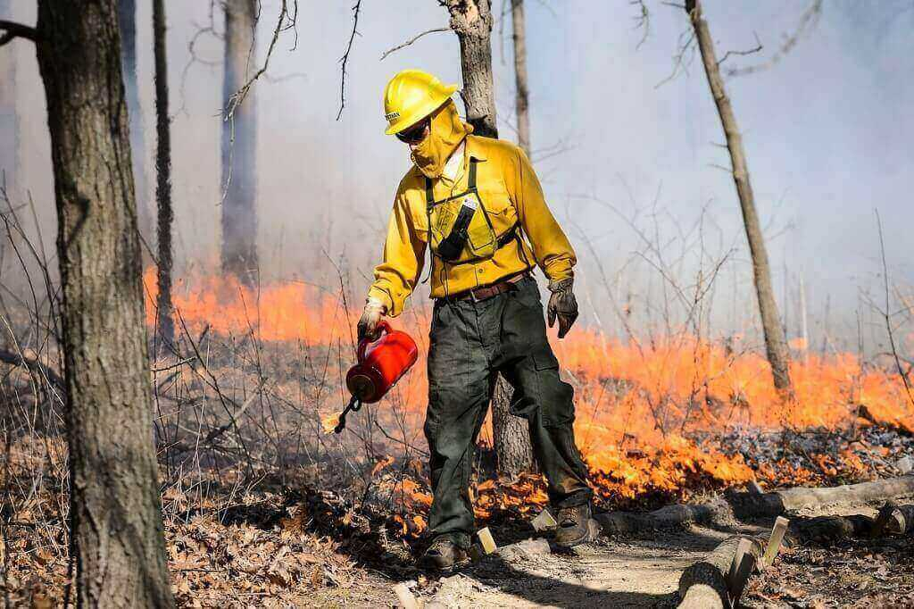 Photo: Worker tending to controlled fire