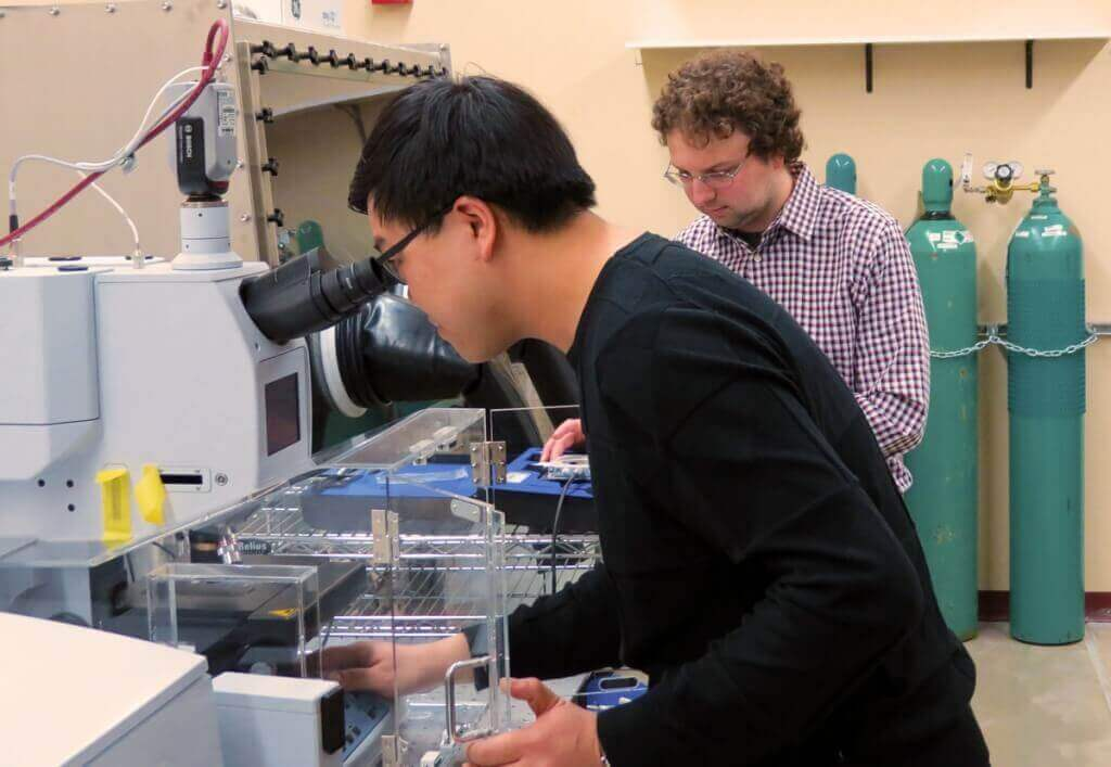 Photo: Chenghao Wan and Mikhail Kats in lab