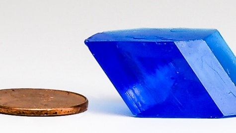This bluestone, grown by Allison Kaelin of Oshkosh High School, received the high-school best-quality award. (Photo by Ilia Guzei)