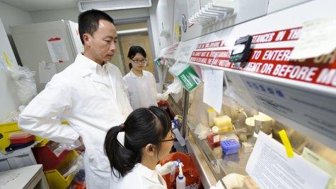 Photo: Su-Chun Zhang in lab