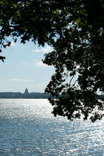 Photo: Madison skyline