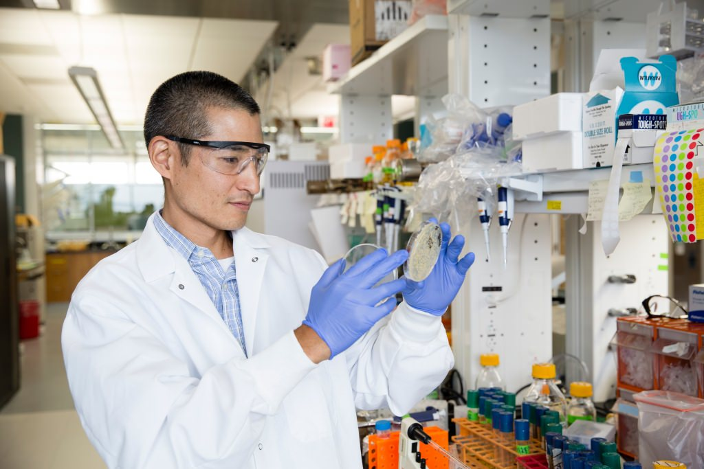 Photo: Trey Sato in lab