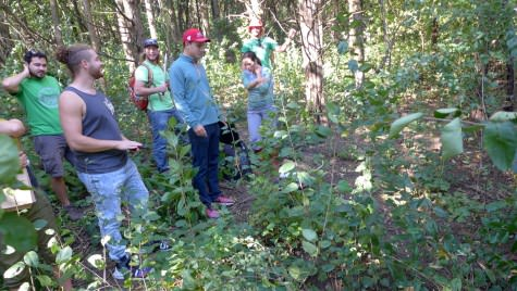 Photo: Students looking at buckthorn