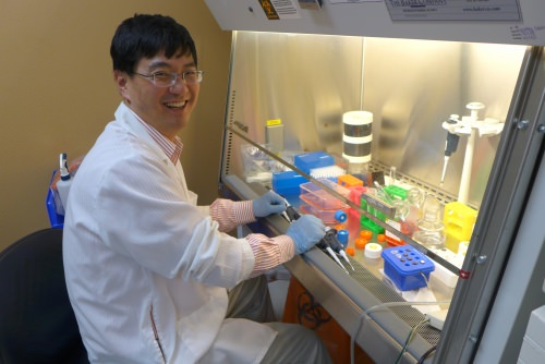 BrainXell co-founder Zhongwei Du working with stem cells at the lab hood.
