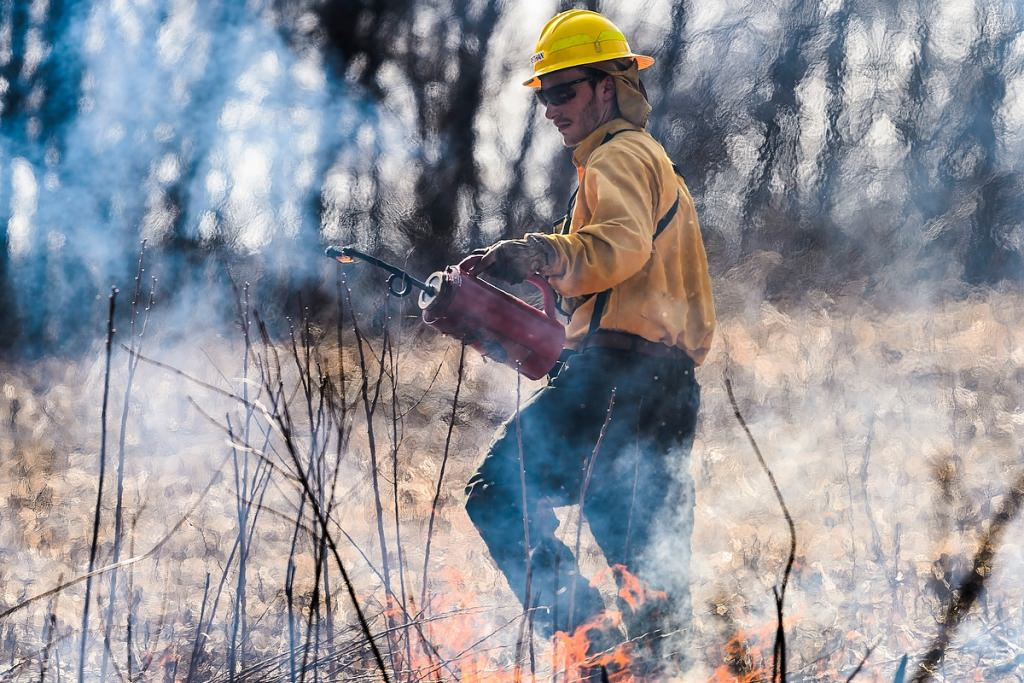 Photo: Worker conducting controlled burn
