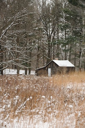 "Snow-covered prairie and woods surround the historic Aldo Leopold shack in rural Baraboo, Wis. Now managed by the Aldo Leopold Foundation, the ""shack"" was a seasonal home and place of research for Leopold."