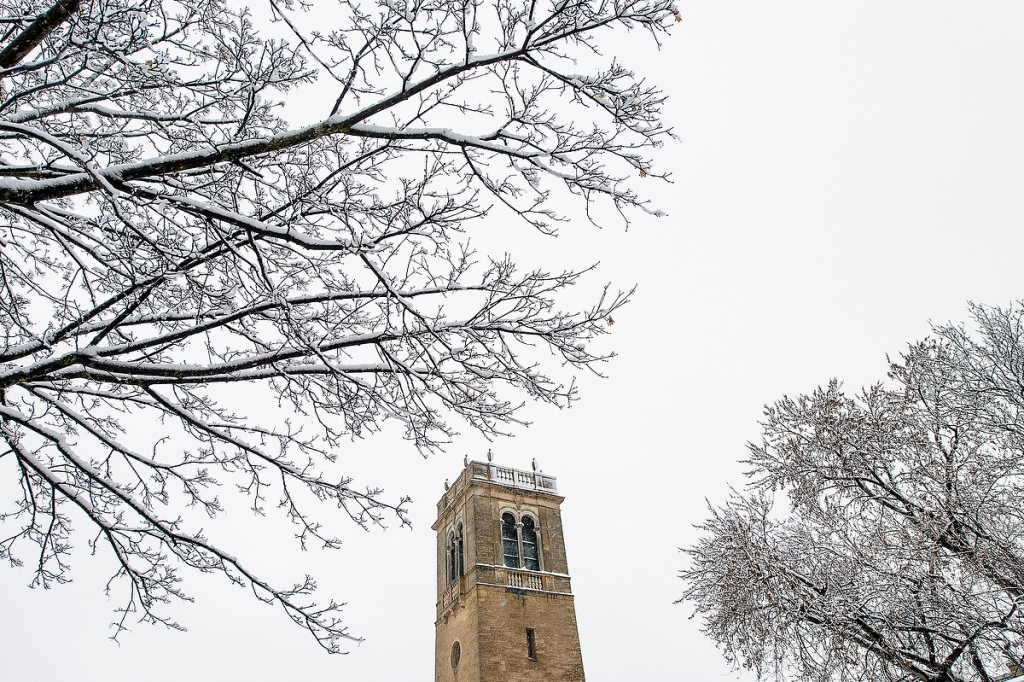 A fresh coat of snow covers trees and the Carillon Tower.