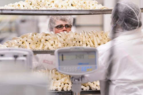 Staff at Chula Vista Cheese Company package a batch of Oaxaca-style string cheese at their food-processing facility in Browntown, Wis., on Dec. 27, 2016. Chula Vista Cheese created the successful, Oaxaca-style of string cheese with the consulting and test-batch help of the Center for Dairy Research at the University of Wisconsin–Madison. (Photo by Jeff Miller/UW-Madison)