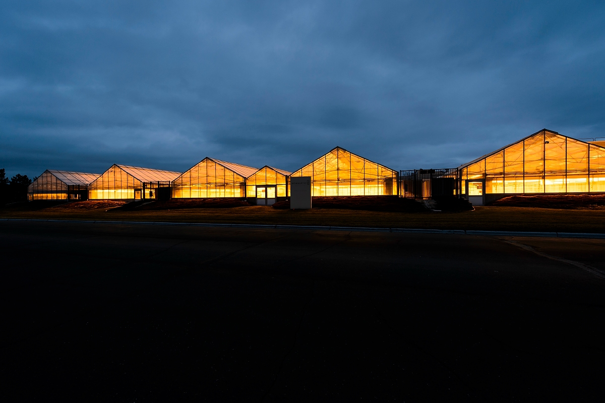 Greenhouse lights glow in the dusk sky at the Wisconsin Crop Innovation Center (WCIC) at the University of Wisconsin–Madison on Jan. 23, 2017. The agricultural research facility location in Middleton, Wis., just west of Madison. (Photo by Jeff Miller/UW-Madison)