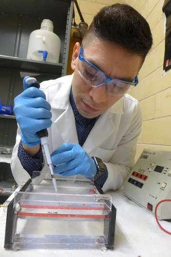 Francisco Moya loads DNA into gel for a quality-assurance procedure at Pathogenomica.
