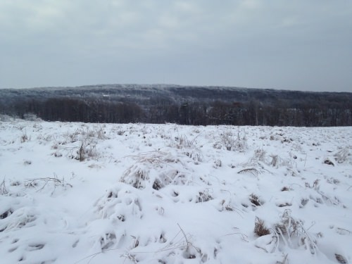 Photo: Blue Mounds winter landscape