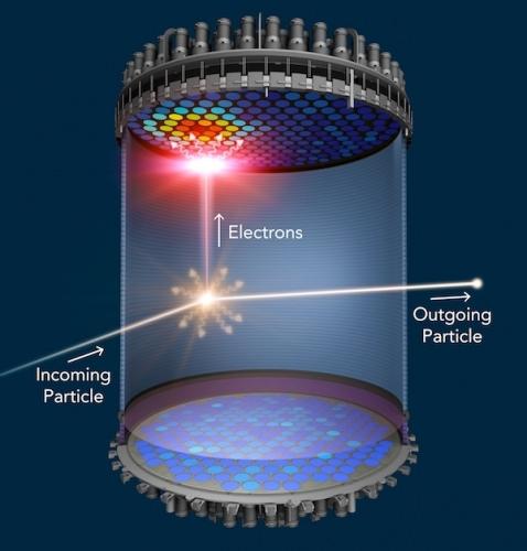 Illustration: Schematic diagram of LZ detector