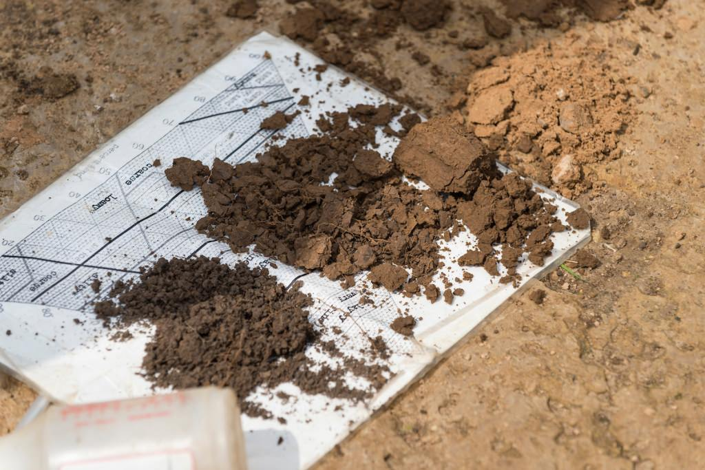 Layered features of vertically exposed prairie soil are pictured during a soil science class field trip to the University of Wisconsin–Madison's Arlington Agricultural Research Station in 2014.