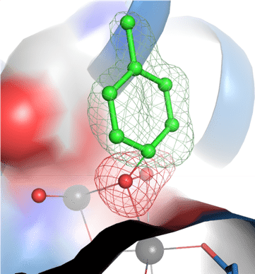 Illustration: Toluene (green molecule) in the process of reacting with oxygen atoms (red) bound between two iron atoms (grey) in a bacterial enzyme.