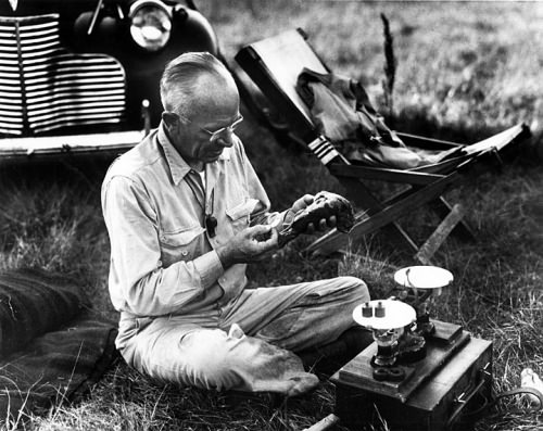 Photo: Aldo Leopold sitting on ground in front of car