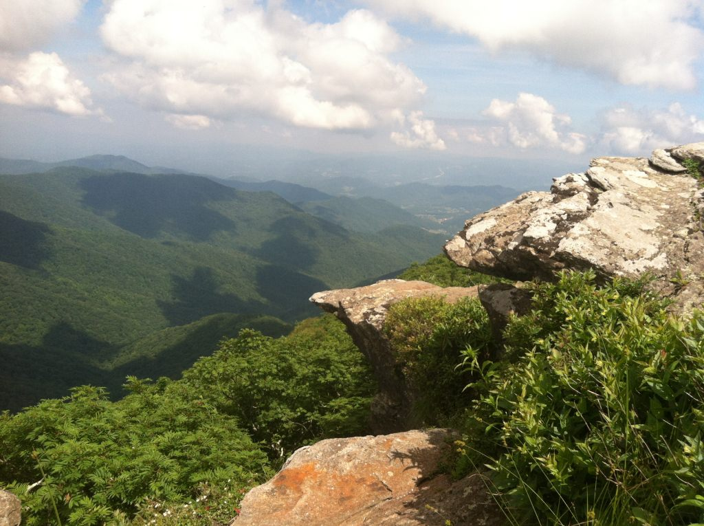 Photo: Blue Ridge Parkway research site