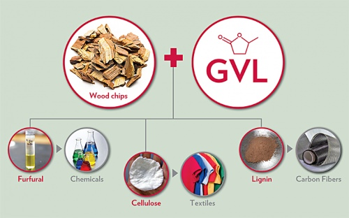 """UW–Madison researchers and collaborators have developed a new """"green"""" technology for converting non-edible biomass into three high-value chemicals that are the basis for products traditionally made from petroleum."""
