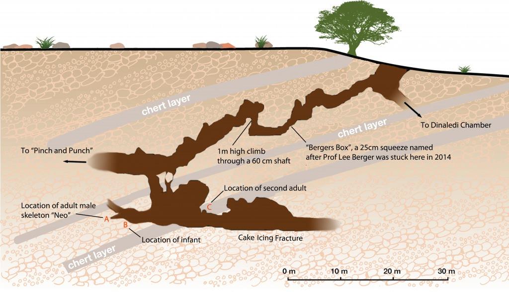 Photo: Diagram of Lesedi Chamber