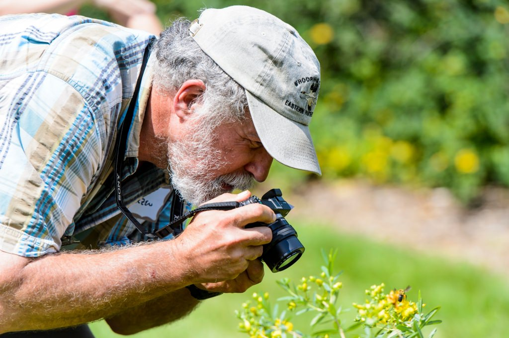 Photo: Jeb Barzen photographing a bee on a St. John's wort plant