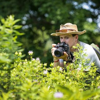 UW-Madison entomology student Jeremy Hemberger carefully overlooks his camera as he photographs bumble bees at the Arboretum.