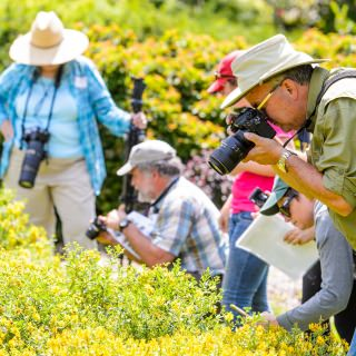 Participants take photos during a bumble bee monitoring workshop that provided instruction on how to photographically document bumble bees for survey and monitoring use.