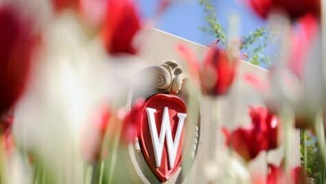 Photo: Flowers in front of UW crest