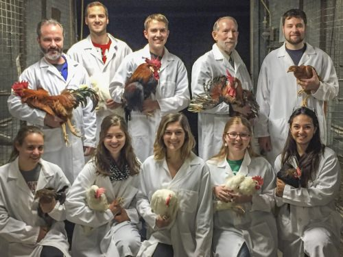 Photo: Mark Cook with lab assistants holding chickens
