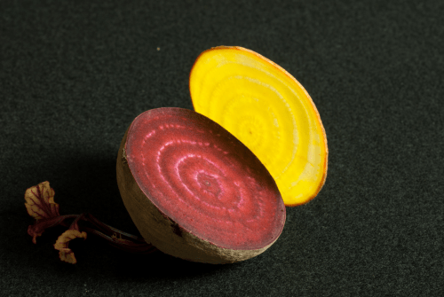 Photo: Slices of red and yellow beets