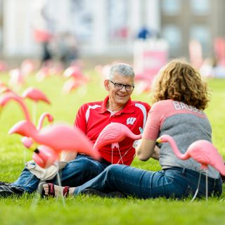 UW alums Scott Radiant, left, and Bonnie Knippel, right, sit amongst hundreds of plastic pink flamingos on Bascom Hill at the University of Wisconsin-Madison as part of the annual