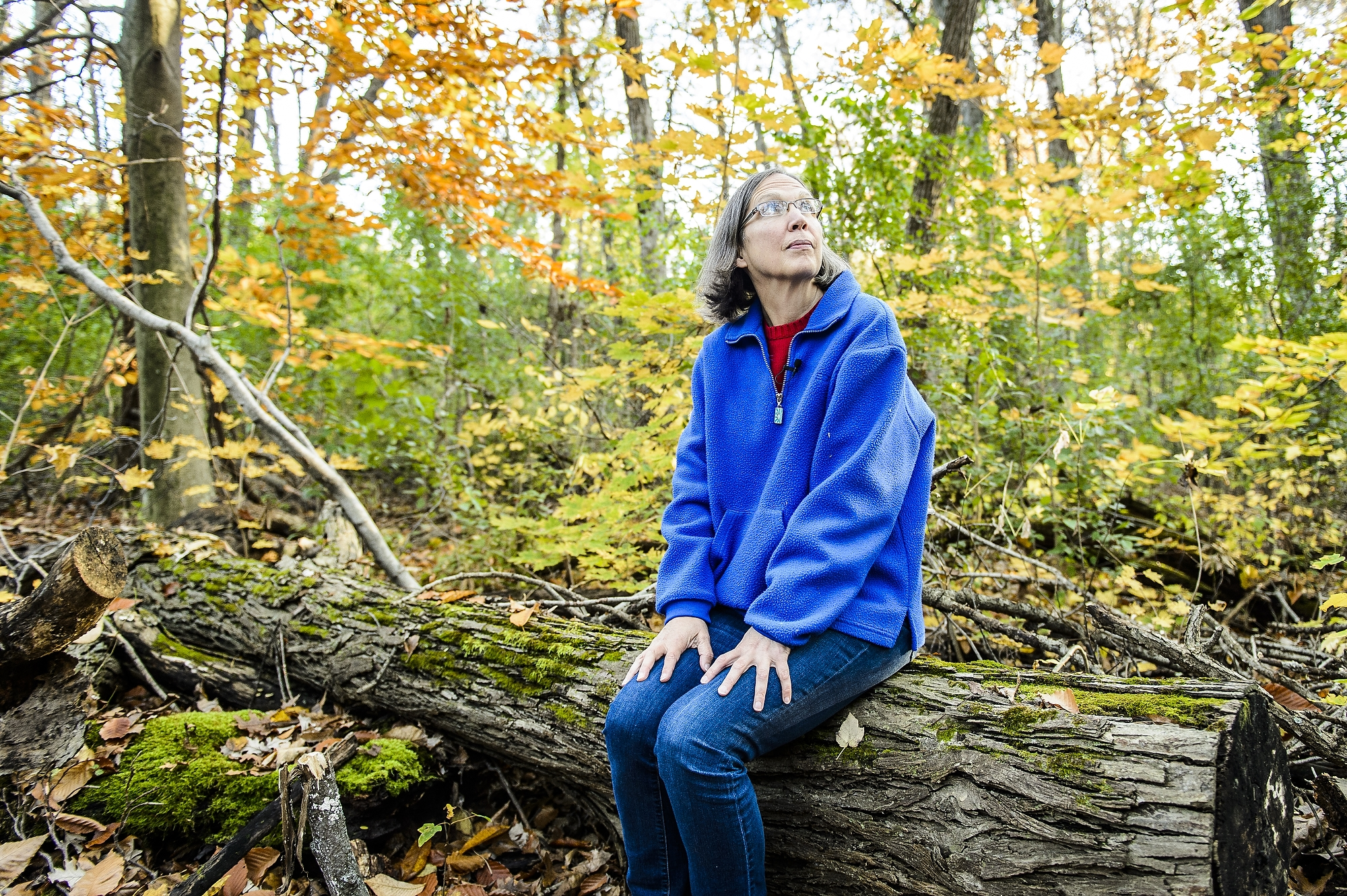 Photo: Karen Oberhauser sitting on a log looking up