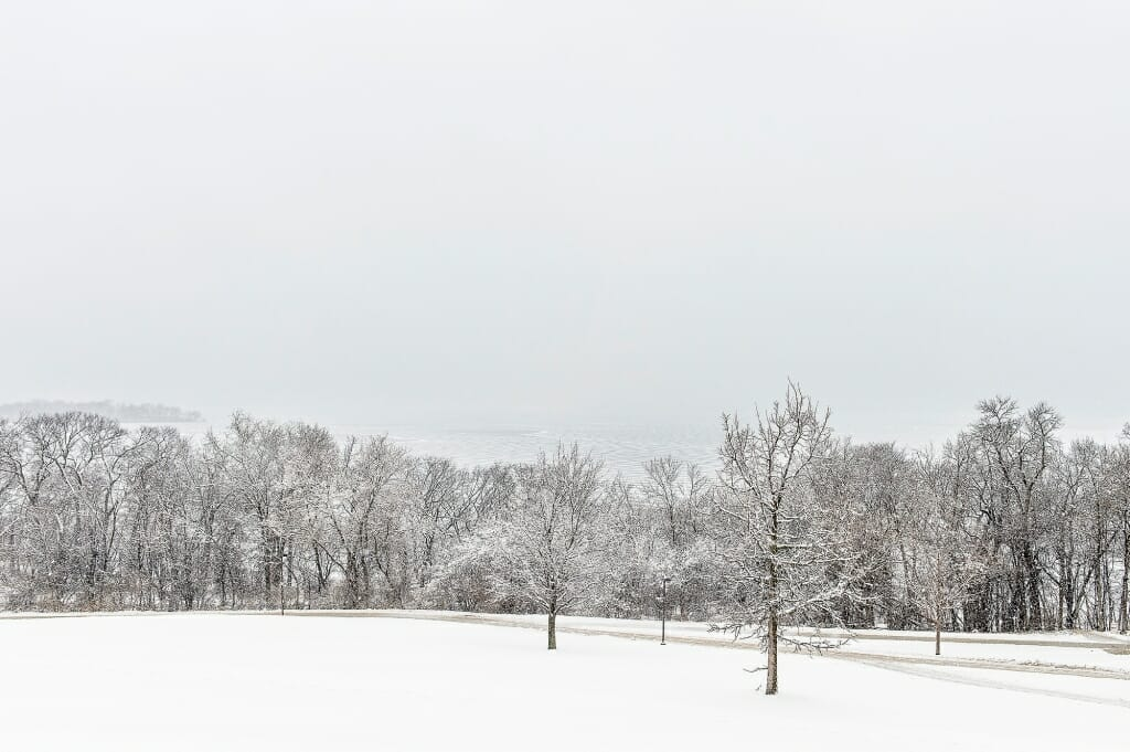 Photo: Snow-covered trees seen from Observatory Hill