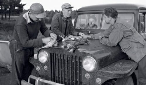 Photo: Hickey and unidentified men looking at birds on hood of a Jeep