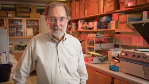 William Busse, a professor of asthma, pulmonary and critical care medicine at the UW–Madison School of Medicine and Public Health, is looking at connections between the immune system and the brain.
