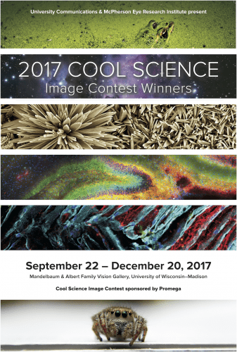 2017 Cool Science Image Contest exhibit poster