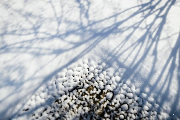 Morning sunlight casts shadows of bare tree branches as a blanket of freshly-fallen snow melts from a corner section of sidewalk on Bascom Hill at the University of Wisconsin-Madison during winter on Jan. 16, 2018. The photograph was made using a tilt/shift-focus lens. (Photo by Jeff Miller / UW-Madison)