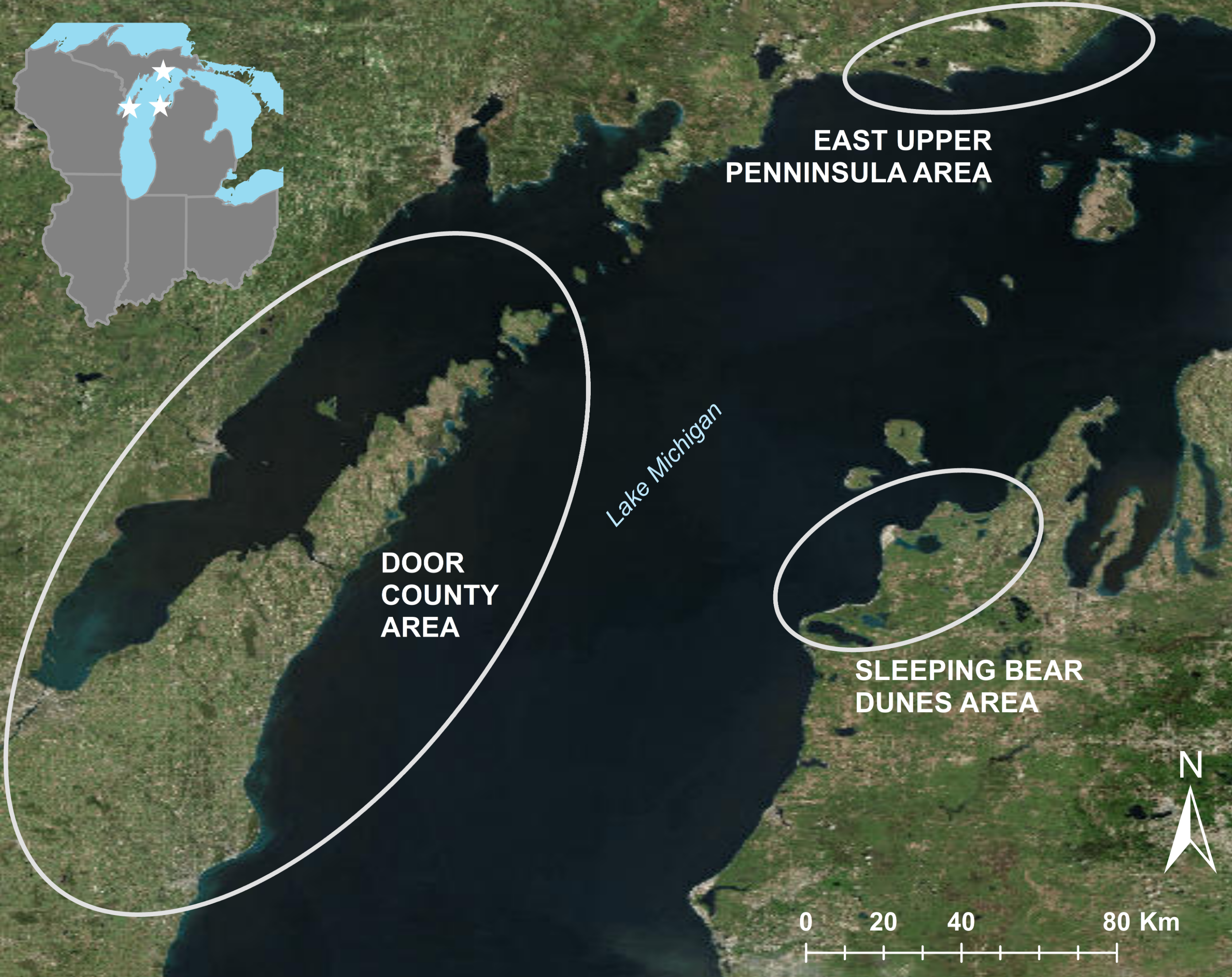 Lake Michigan waterfowl botulism s linked to warm ... on map of racine wi, map of menomonie wi, map of apostle islands wi, map of algoma wi, map of black river falls wi, map of jacksonport wi, map of green bay wi, map of washington island wi, map of city of madison wi, map of castle rock lake wi, map of liberty grove wi, map of ohio by county, map of baileys harbor wi, map of lakewood wi, map of the fox valley wi, map of beloit wi, map of wisconsin, map of peninsula state park wi, map of de soto wi,