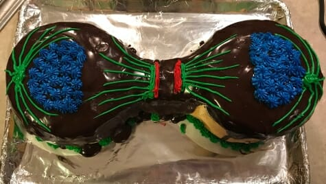 Photo: Cake showing cell dividing