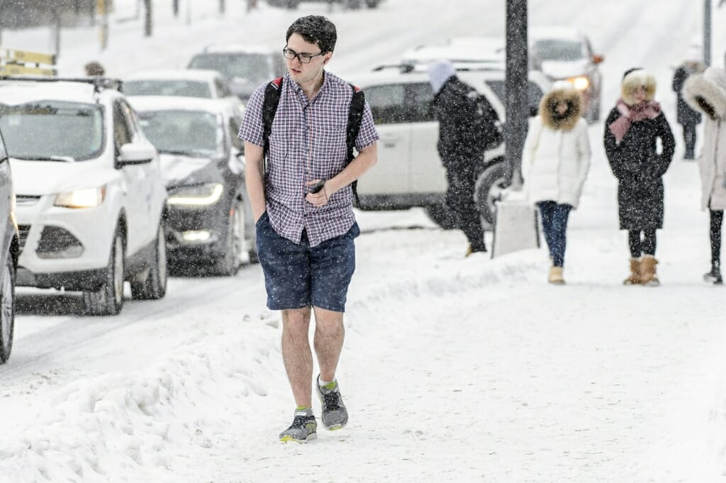 Image result for shorts in the snow