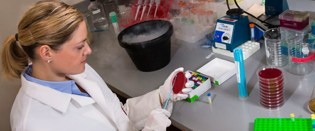 Photo: Laurel Legenza holding petri dish at lab bench