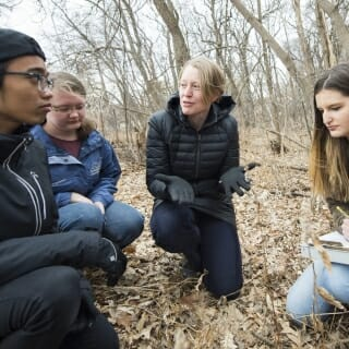 <strong>Ellen Damschen,</strong><i> associate professor of integrative biology<br>Chancellor's Inclusive Excellence Award</i><br><br>
