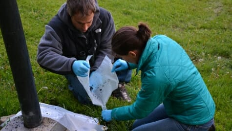 Zach Peery and Heather Kaarakka collecting guano for a study of bat's diets.