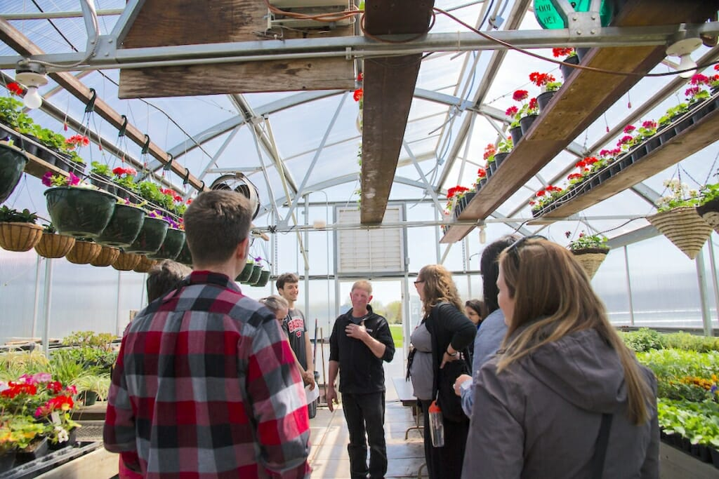 Photo: Teacher with visitors in greenhouse