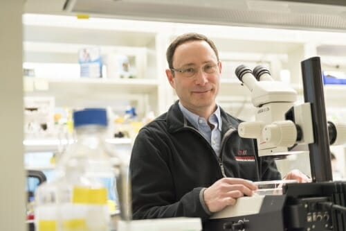 Photo: Phillip Newmark in his lab