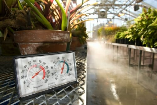 Photo: Closeup of thermometer and humidity gauge in greenhouse