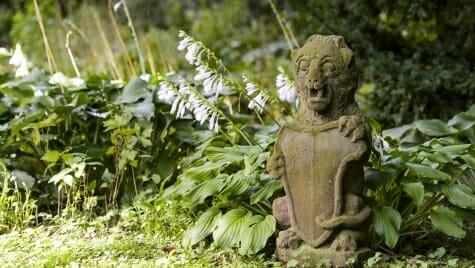 Photo: Stone gargoyle sitting in garden in front of hostas