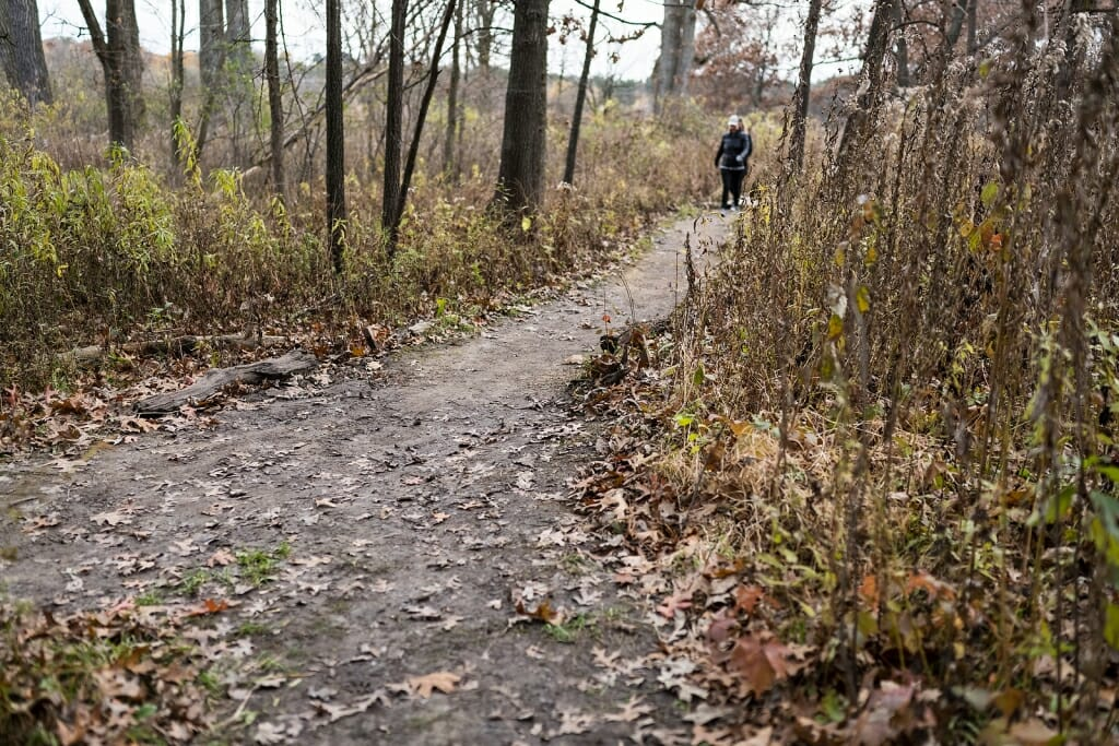 Photo of visitors walking a trail.