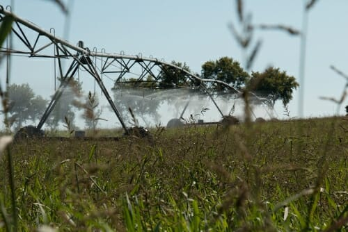 Photo: Irrigator releasing water
