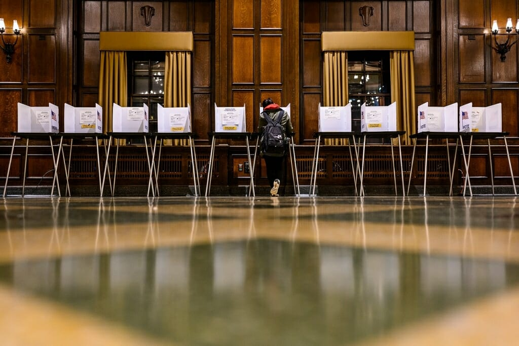 Photo: Row of voting booths with one person filling out ballot